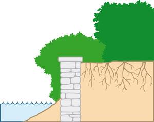 En haut ou en bas d un mur ou d un muret bande riveraine - Que planter le long d un mur au soleil ...